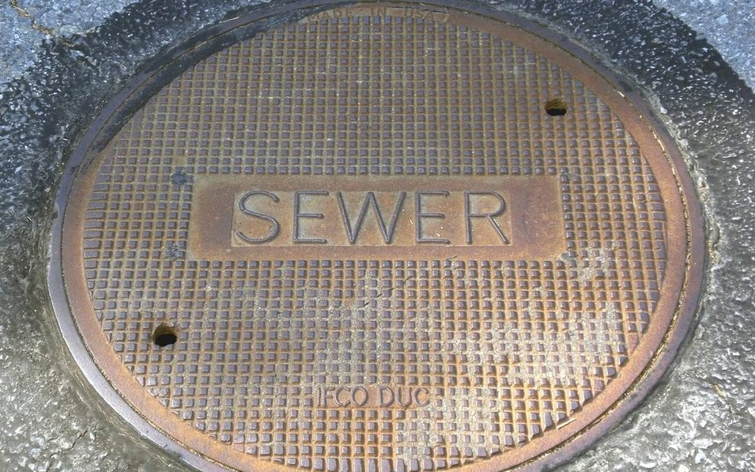 order a sewer scope inspection for an understanding of your main drainage line