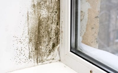 Ways to Keep a Safe and Healthy Home